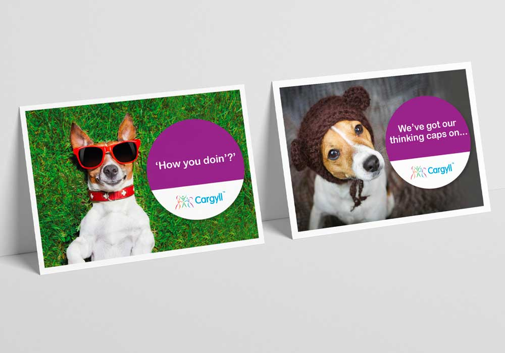 2 funny creative postcards created for Cargyll Consultants - featuring dogs in sunglasses and hats